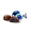 Слива в шоколаде SLIWKA NALECZOWSKA. Продажа в Словении.